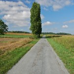 最近調子に乗り過ぎだと思う、フランスの道路