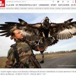 フランス空軍の「新兵器」!不審ドローンに「鷹」でアタック