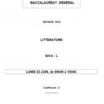 難しすぎてビックリ!フランス・バカロレア2015文学の問題