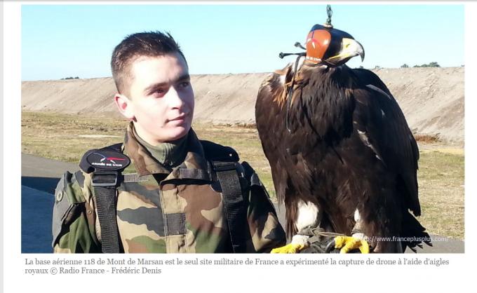 フランス空軍 鷹 ドローン